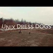 Вбудована мініатюра для Unix Dress Dog's